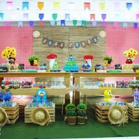 Festa Arraiá da Galinha Pintadinha