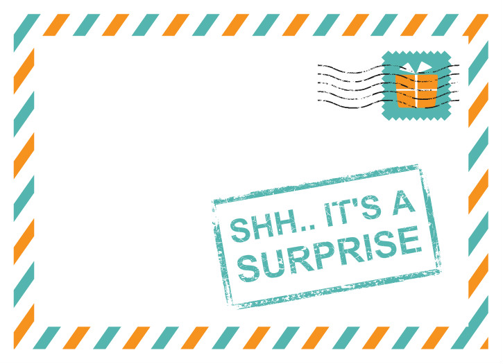 Top Secret Surprise Birthday Surprise Birthday Invitations