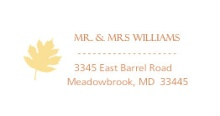 Multi Colored Fall Leaves (Set) Address Label