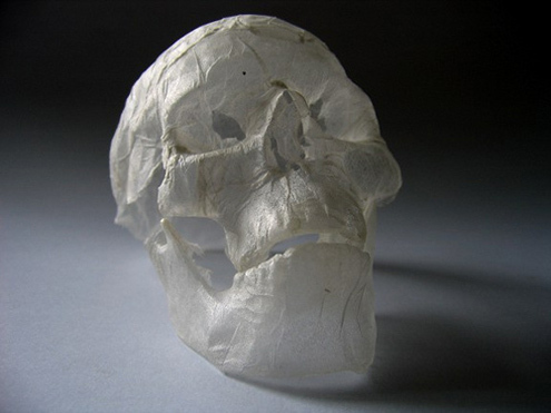 Polly_verity_skull-1_large