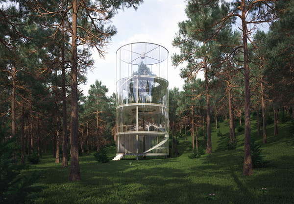 Tree in the House (2013) by Almasov Aibek of A.Masow Design Studio