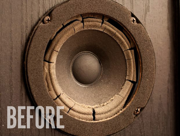 Speaker-before_large
