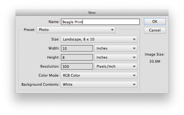 """selecting Layer > Layer Mask > Reveal Selection."""" width=""""600″ height=""""374″ /> </p> <p>Remember the tab with your cut out image on it? Move to that tab and select your cut out, drag it to the new tab you just made and drop it onto your 8×10 file. Resize it to the size you'd like for it to be on the canvas.Once you've done that we need to simplify the image, this will effectively remove the mask. To do this, select<strong> Layer > Simplify Layer </strong>or<strong> right click </strong>the layer and select<strong> Simplify Layer. </strong>You should see the black and white image next to your color image disappear.</p> <p><img src="""