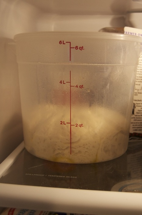 Dough rising up in the fridge.