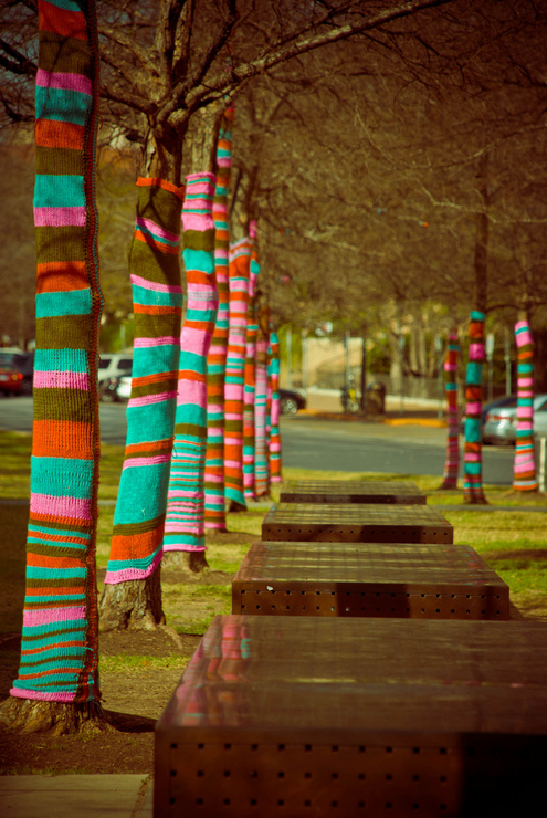 Knitting Trees Art : Yarn bombing knit a bus and purl tree out of the