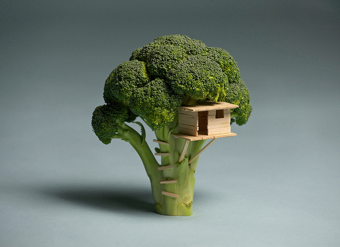Broccoli_20house
