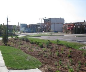 Green Infrastructure Element