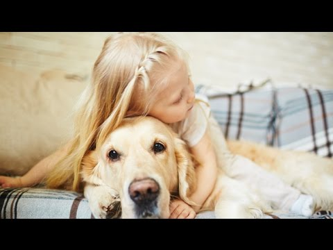 Top 10 Most Loyal Dog Breeds – Amazing Facts