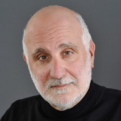 Stephen J. Andriole