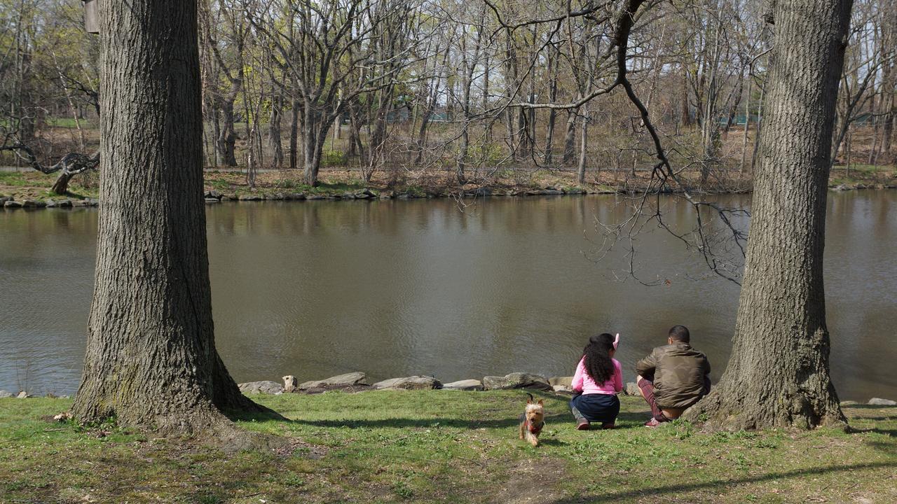 Van Cortland: Un sitio de paz en El Bronx