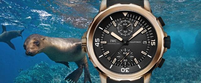 "IWC Aquatimer Chronograph Edition ""Expedition Charles ..."