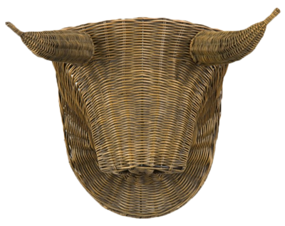 Toro-bullhead-jayson-home