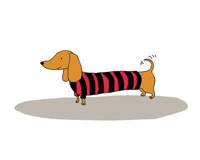 Alli_arnold_doggie_sweater_stampa