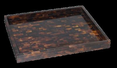 Pen-shell-tray