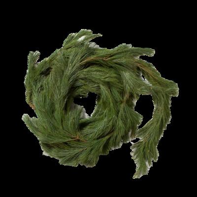 Pine-rope-terrain
