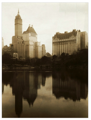 View-of-the-plaza-hotel-art-dot-com