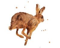 Hare-etsy