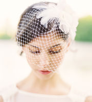 16-37532_hushed-commotion-lila-birdcage-veil-1363037781-270