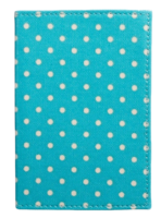 Mini-dot-passport-case-asos