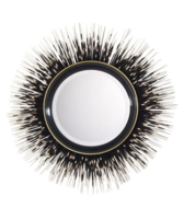 Porcupine-quill-mirror