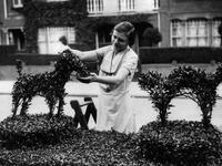 Topiary-pets-art-dot-com