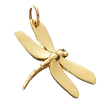 Dragon-fly-charm