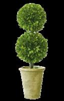 Double-topiary
