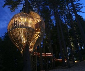 10-amazing-examples-of-treehouse-archicture-m