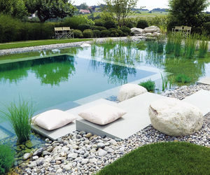 19 Incredible Natural Swimming Pools to Inspire