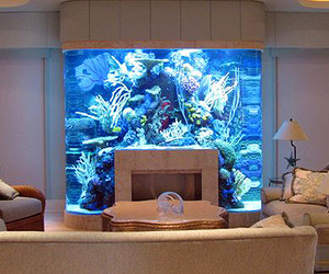 20-unusual-places-for-aquariums-in-your-home-m