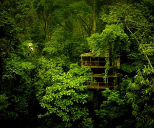7-amazing-ecotourism-escapes-m