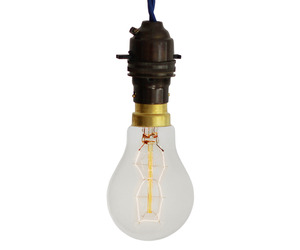 8-point-carbon-filament-light-bulb-40w-220-240v-m