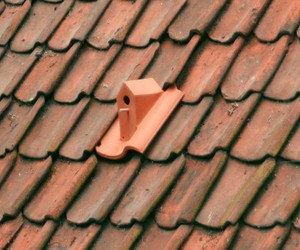 A-birdhouse-to-be-inserted-among-the-rooftiles-m