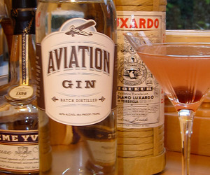 A High-Flying Gin for Modern Mixologists