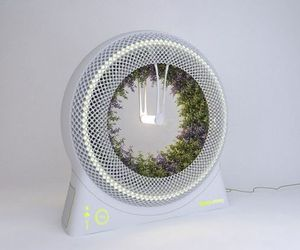 A-modified-space-ship-garden-gadget-find-way-to-urban-homes-m