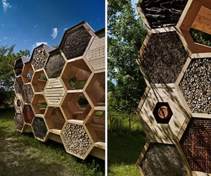 Bee Pavilion for Bees | atelierd