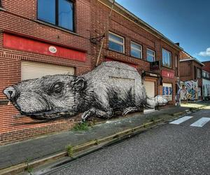Abandoned Belgium Town Becomes Covered in Street Art