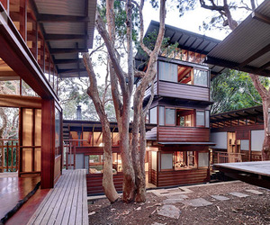 Angophora House in Australia | Richard Leplastrier
