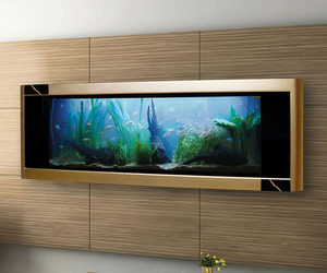 Aquavista-dino-gold-fish-tank-is-worlds-most-expensive-m