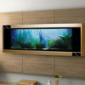 Aquavista-dino-gold-fish-tank-is-worlds-most-expensive-s