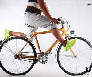 Bamboo-bee-bicycle-m