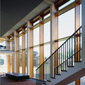 Bamboo-curtain-walls-now-available-s