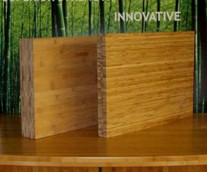 Bamboo-panels-lamboo-lvb-sustainable-future-m