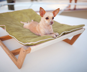 Bamboo-pet-hammock-ii-m