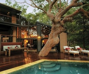 Beach-retreat-in-australia-set-among-native-eucalypti-m