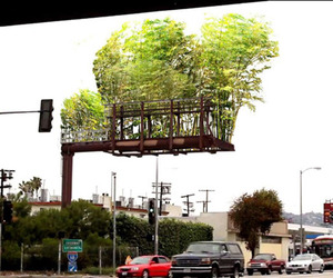 Billboards-converted-into-bamboo-gardens-m