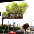 Billboards-converted-into-bamboo-gardens-s