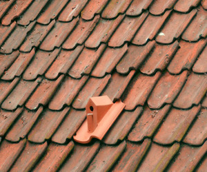Birdhouse-roof-tile-by-klaas-kuiken-m