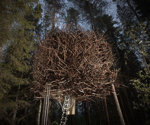 Birds Nest Treehouse by Treehotel