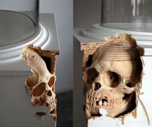 Bizarre-anatomical-sculptures-m